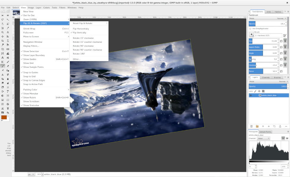 Rotating and flipping the canvas