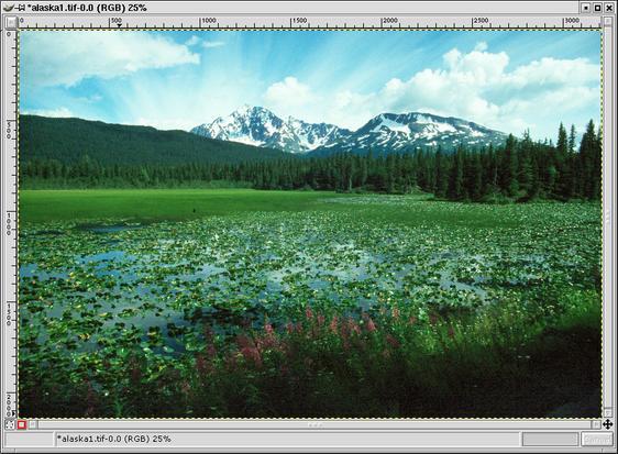 image-overlay.jpg