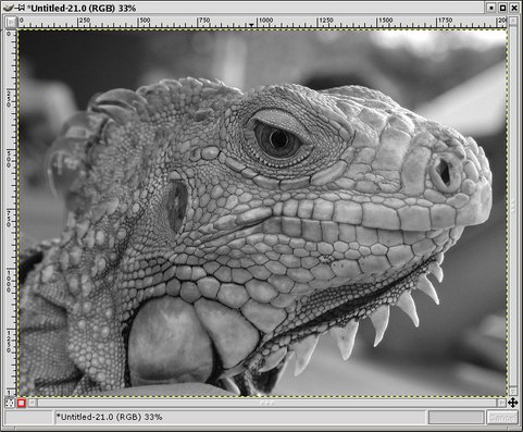 image-channelmixer-481x397.jpg