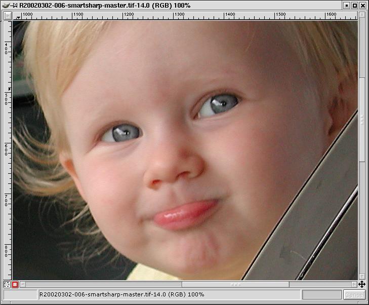 image-compare-smartsharp-zoomed100.jpg