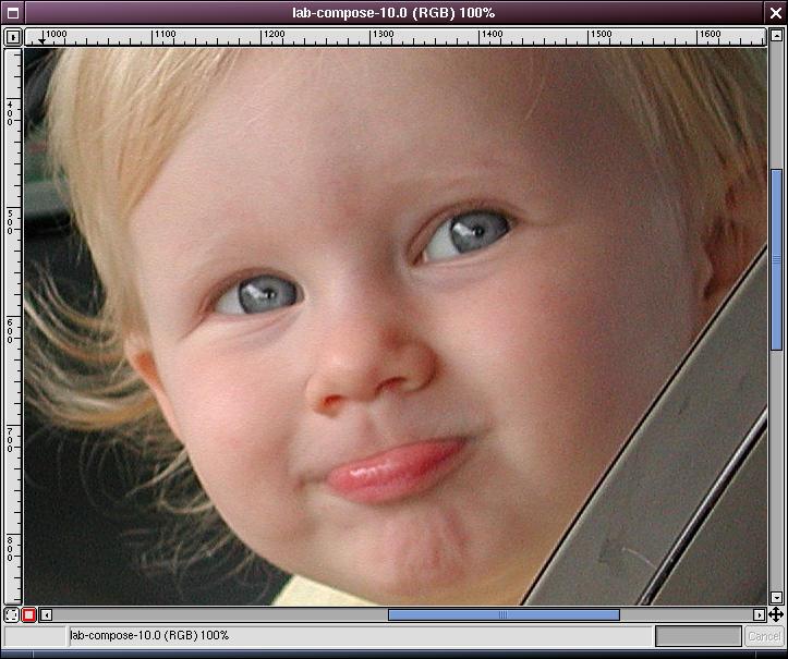 image-luminositysharpened-zoomed100.jpg
