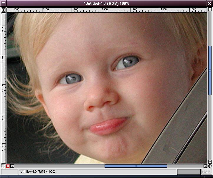 image-regularsharpened-zoomed100.jpg