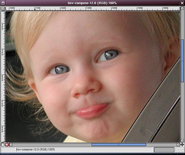image-valuesharpened-zoomed100.jpg